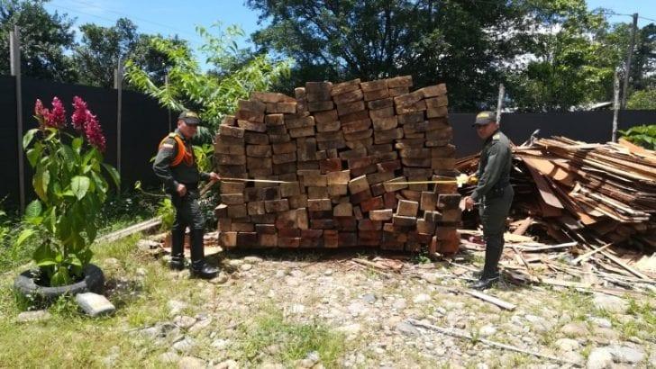 Lucha frontal contra la deforestación