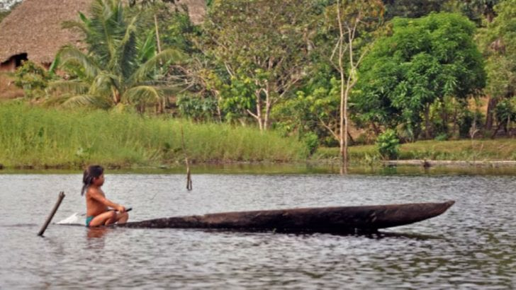 Consulta previa, una deuda con la Amazonia