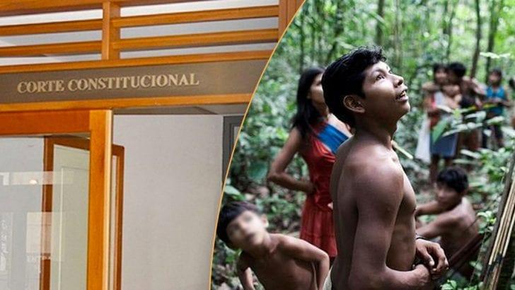 Corte Constitucional falla a favor de pueblo indígena Awa