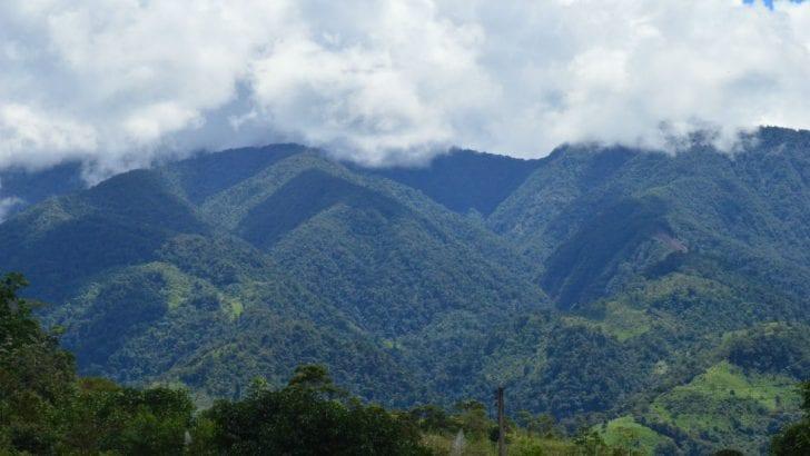 La pelea de dos décadas que tiene en vilo el futuro de las montañas de Mocoa