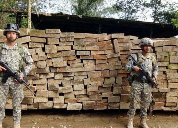 Incautada madera y combustible en Putumayo y Caquetá