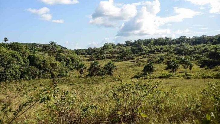 La naturaleza, una de las grandes apuestas del turismo en el país