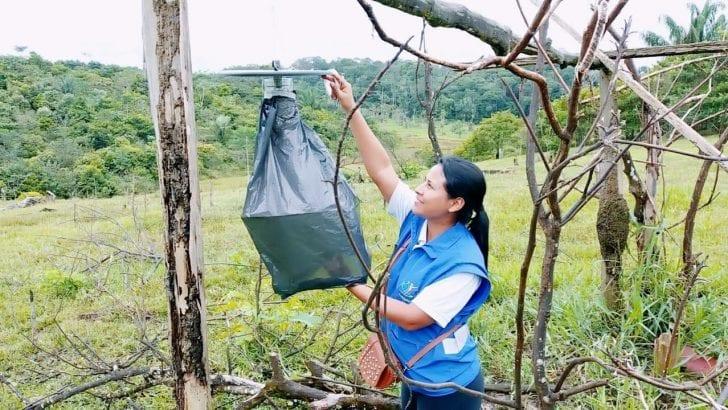 Aumentan casos de dengue en el Putumayo