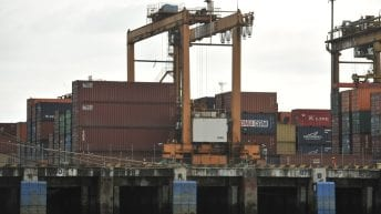 Lo que hay son países para exportar productos colombianos