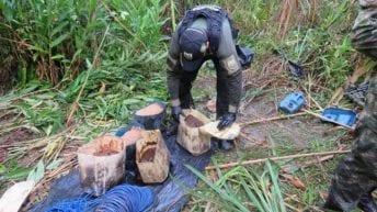 Desmantelan en Putumayo campo minado con 98 kg de anfo
