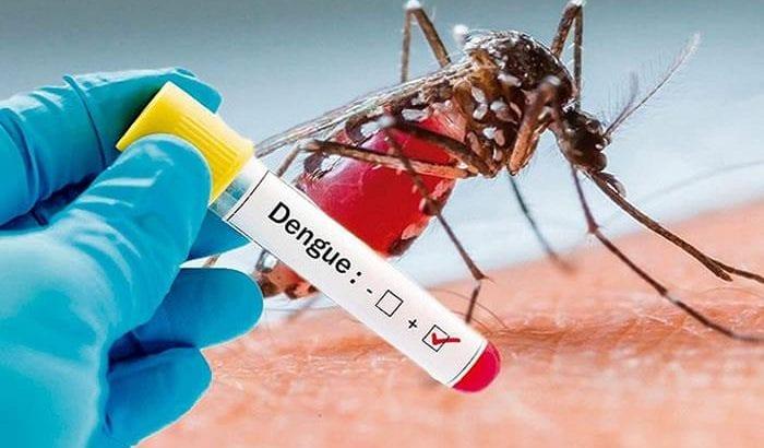¡Alerta! MinSalud advierte posible epidemia de dengue en Colombia