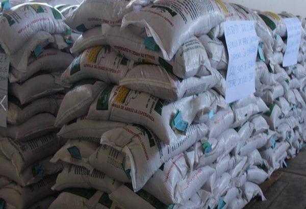 Dejaron la coca para sembrar arroz y ahora nadie les quiere comprar