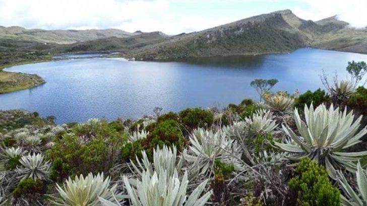 Proponen legislar por la defensa del agua en Colombia
