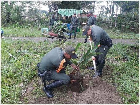Siembra de árboles en Mocoa y La Hormiga por parte de Carabineros de la Policía Putumayo