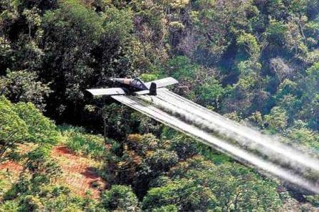 Duque pide reactivar aspersión con glifosato en cultivos ilícitos en Colombia_Spanish