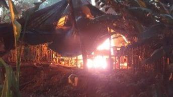 Destruido gigantesco laboratorio para el procesamiento de cocaína en más de tres mil millones de pesos