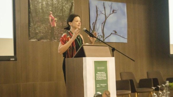 Gobierno y socios internacionales promueven la alianza para la Cero Deforestación de los bosques tropicales en Colombia