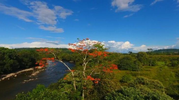 Construcción del Plan de Desarrollo Turístico del Municipio de Orito