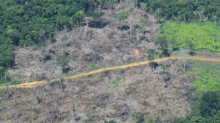 Hay más de 32.000 kilómetros de vías en la Amazonia colombiana