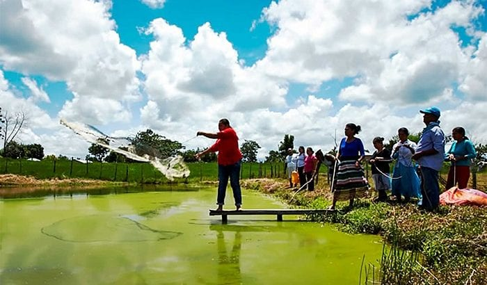 Sector público del Putumayo, conozca el programa  que puede mejorar las condiciones de vida de sus pueblos indígenas