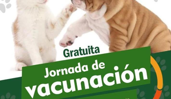 Jornada de vacunación gratuita antirrábica para caninos y felinos en Mocoa