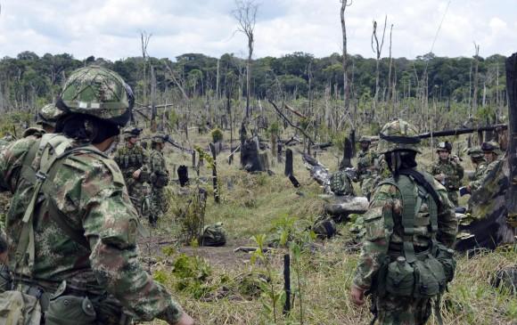 Tribunal de Bogotá pedirá cuentas sobre protección de la Amazonia