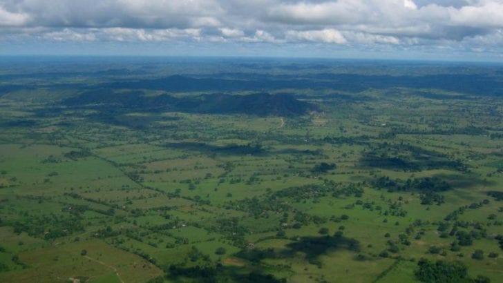 En zonas de influencia de 10 CAR se concentra 73 % de la deforestación