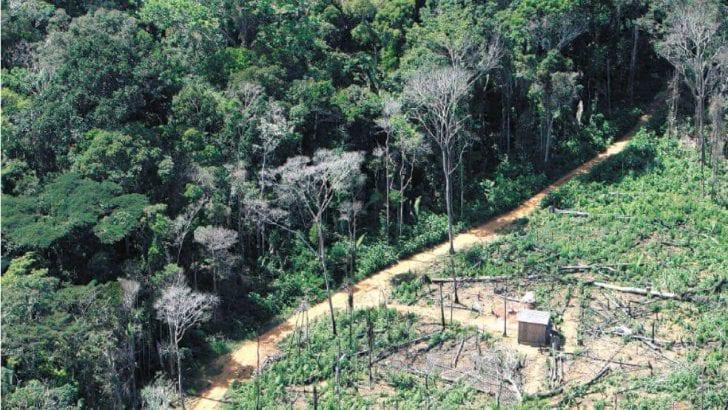 Operativo militar contra la deforestación en la Amazonia levanta ampolla