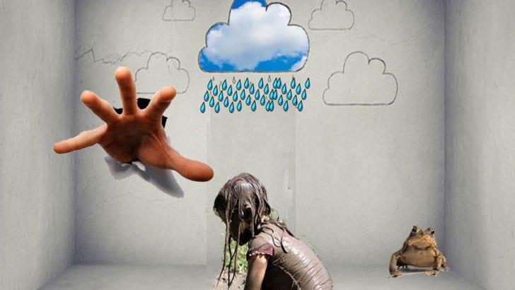 La lluvia, la mano y el sapo