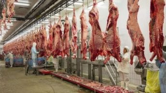 Gobierno hace cambios a decreto que permitirá reapertura de mataderos