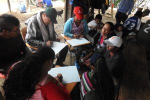 600 líderes de la Amazonía colombiana serán capacitados para el aprovechamiento sostenible de los bosques