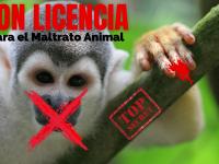 Con licencia para el maltrato animal
